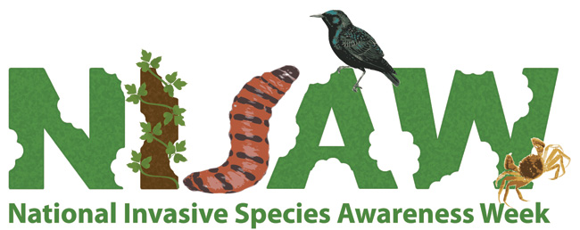 It's National Invasive Species Awareness Week!